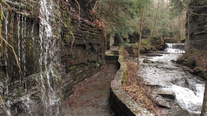 Gorge Trail, the Pinnacle, Fillmore Glen State Park, Cayuga County, NY, Finger Lakes