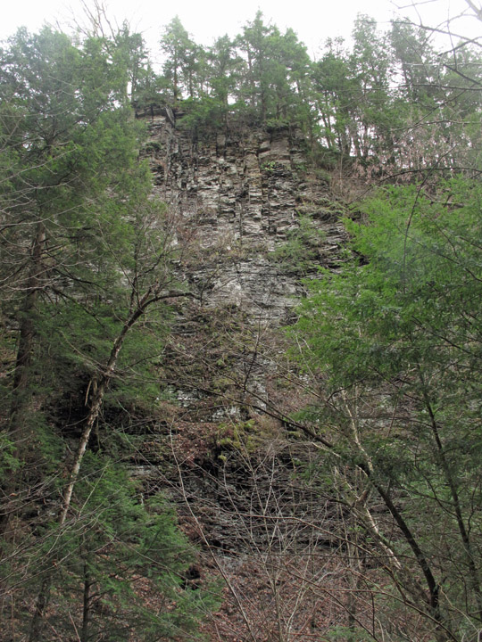 The Pinnacle, Gorge Trail, waterfall, Fillmore Glen State Park, Cayuga County, NY, Finger Lakes