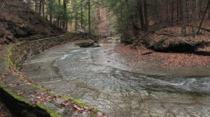 Dry Creek, Fillmore Glen State Park, Cayuga County, NY, Finger Lakes, Gorge Trail